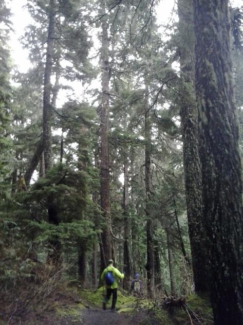 Howe Sound Crest Trail. foto: Félix Escobar