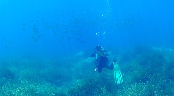 Los Escullos, Cabo de Gata, mi primera inmersión…